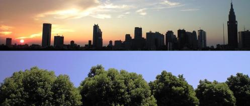 I made this but combining a great shot of the shinjuku skyline and a skyline of trees.  I like the feeling of this photo.